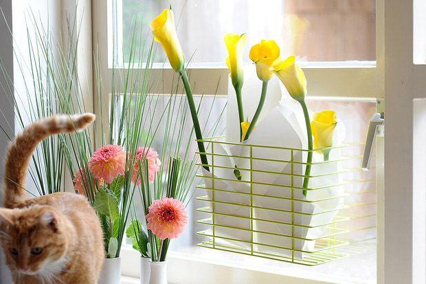 Sunlit Lilies