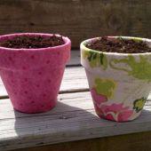Modern Planter (Plant in Spring)