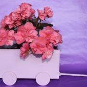Window Still Flower Cart (Plant in Spring)