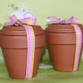Garden Gift Set (Plant in Spring)