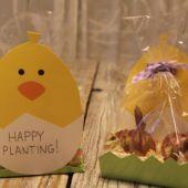 Bulb Place Setting - Custom Card