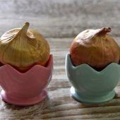 Bulb Place Setting - Gladioli Egg Holder