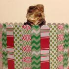 Holiday Patterns Amaryllis